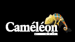 Logo Caméléon Communication